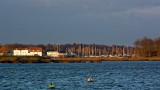 Tide Mill and marina