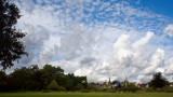 Woodbridge town and windmill
