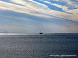 Long Island Sound and Charles Island / Milford CT / Feb 2015