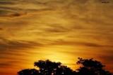 Pre-sunrise sky