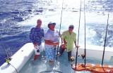 Ocean Reef Club Sailfish Tournament, Florida Keys 2013