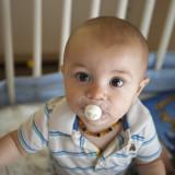 Paul  (8 months)