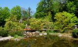 WIEN Japanischer Garten