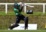Central Districts Stags vs Canterbury Kings T20 Super Smash 31-12-16