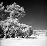 IR-REAL  - Infrared photos in the park of Ville Reale di Monza.