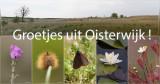 Oisterwijk 2014 (en omgeving)