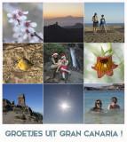 Gran Canaria 2015