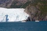Kenai Fjords (Ailak Glacier)