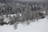 Winter zima_MG_0458-111.jpg