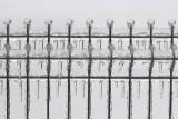 Ice fence ledena ograja_MG_1242-111.jpg