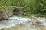 Mostnica river_MG_392711-111.jpg