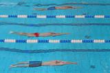 Swimmers plavalci_MG_2078-111.jpg