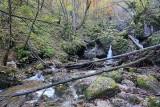 Hell gorge soteska Pekel, Borovnica_IMG_2826-111.jpg