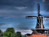Day trip to Haarlem and Leiden
