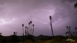 Palm Springs Lightning