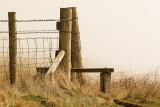 Dorset villages and landscapes