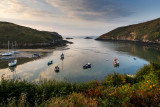 Early morning Solva estuary