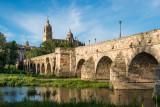 Bridge and domes, Salamanca