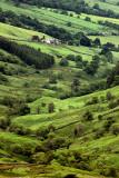 Hillside farm near Ambleside, Cumbria