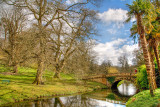 Bridge and trees, Minterne Gardens, Dorset (3400)