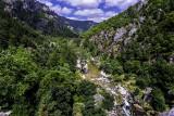 Gorges du Tarn 2015
