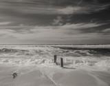 Beach Roil (Pt/Pd finish)