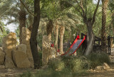 Hajer Garden, waiting for somebody to play