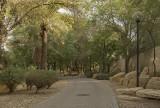 Hajer Garden, quiet pathway