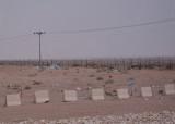 The great desert trashbin