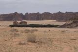 Mountain desert oasis