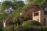 Al Khozama Garden, colorful wall