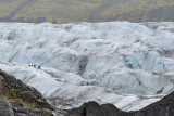 Svínafellsjökull, glacier expedition