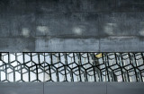 Harpa, abstract (5)