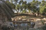 Al Nafel Garden