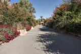 Another walkway park