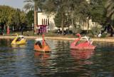 Riyadh's Salam Park