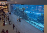 Aquarium, The Dubai Mall