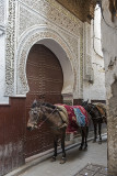 Fes, medina, transport