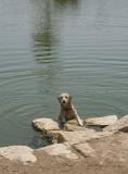 Sahraa learns to swim (2)