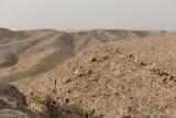 Monkey quest: Rocks and 'hills'