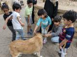 Sahraa attracts a crowd