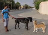 Sahraa and the prince's dog