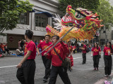 Dragon & Lion Dance Team