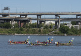 Dragon boat race: In progress