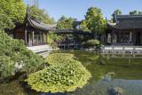 Lan Su Chinese Garden, lily pond