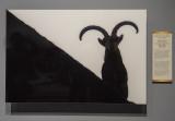 'Spanish Ibex,' by Oscar Díez