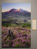 'Mount St. Helens National Volcanic Monument,' by Adrian Klein