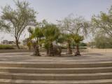 Mini 'park'