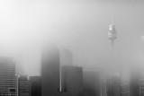 Sydney fog: 12-May-2013