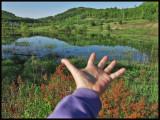 hand Mt Baldy 2014sma.jpg